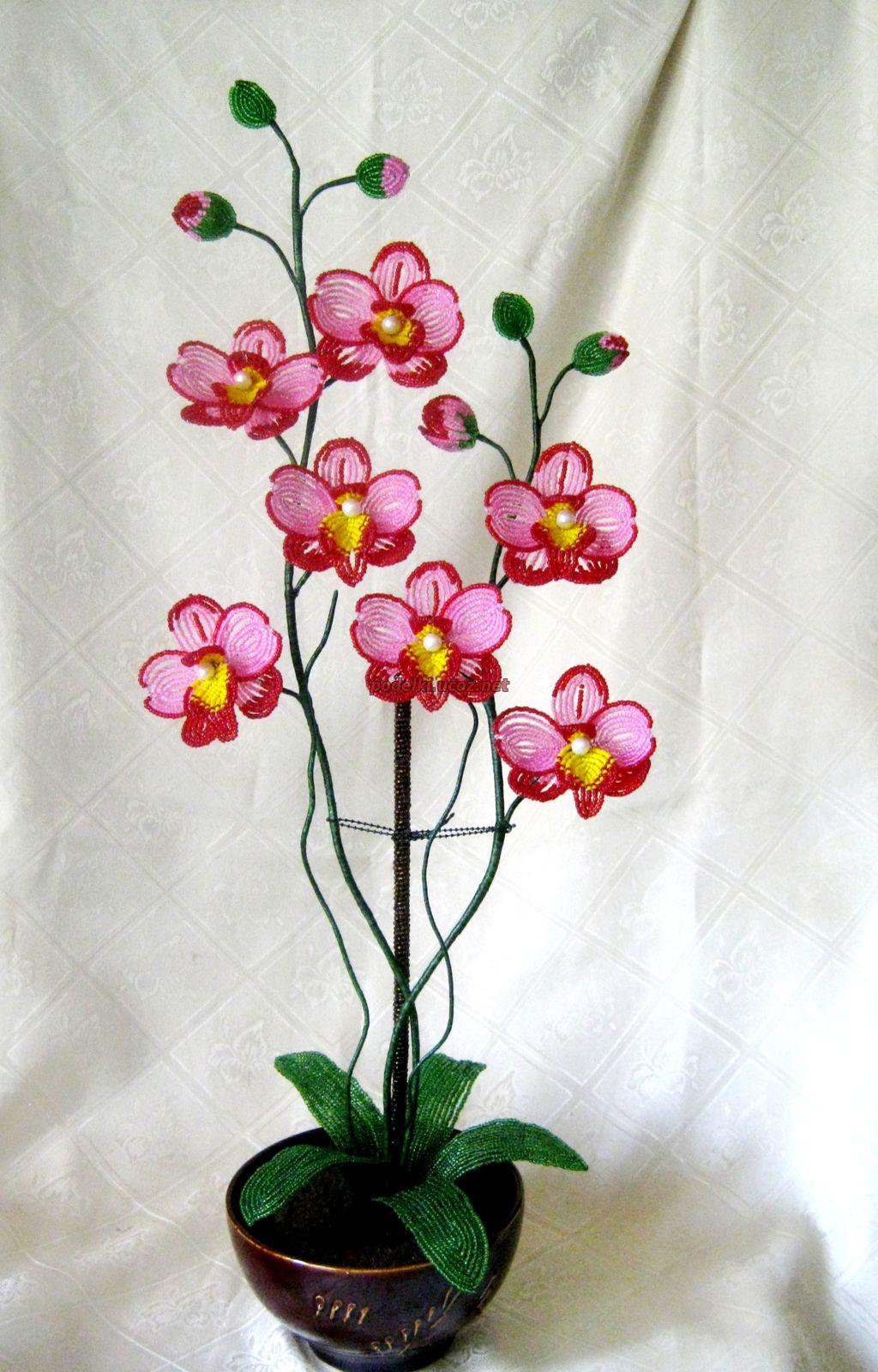 Орхидея фаленопсис из бисера фото