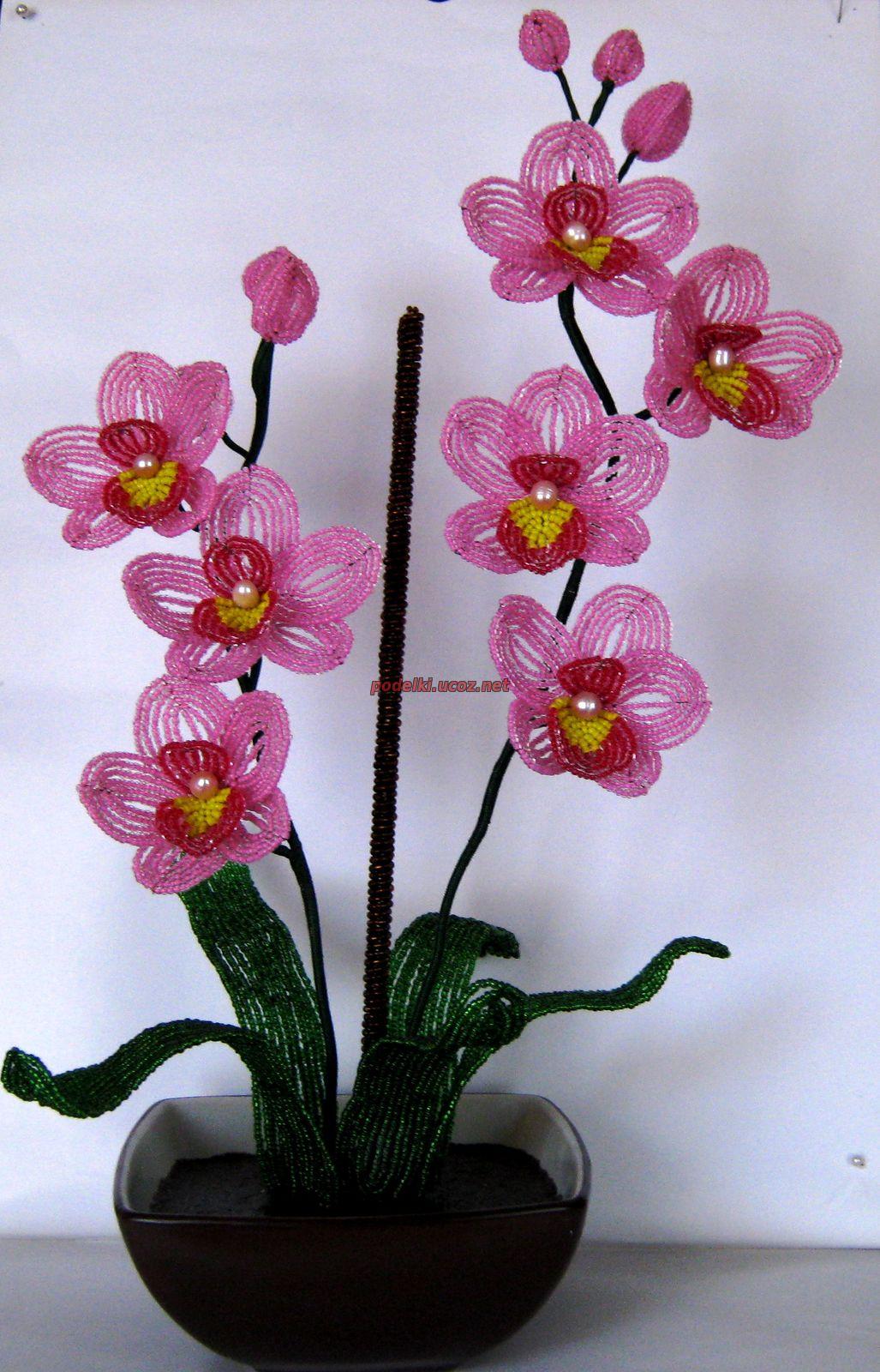 Бисероплетение цветы мастер класс с пошаговым орхидеи